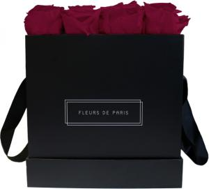 Collection Infinity Velvet Plum Grand noir - anguleux