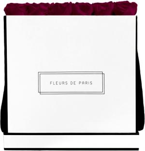 Collection Infinity Velvet Plum Luxe blanc - anguleux